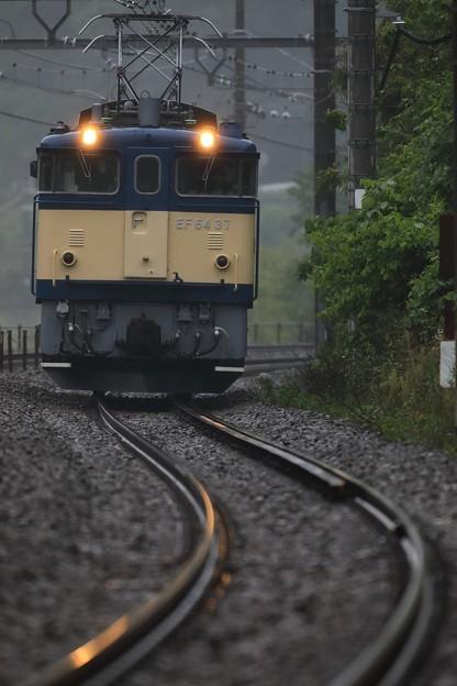 Photos: EF64 37