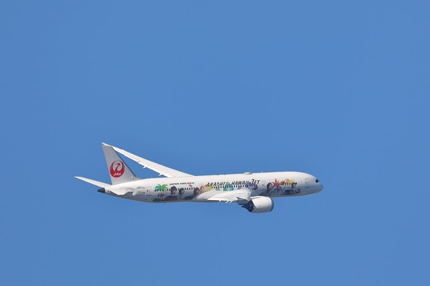Photos: B787 嵐