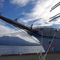 写真: 海王丸と桜島 a