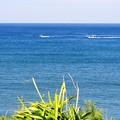 写真: 東シナ海