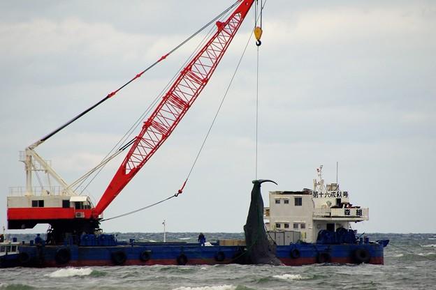 クジラ b