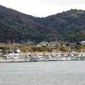 写真: 小湊漁港