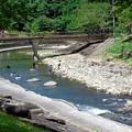 Photos: 滝の下流
