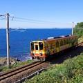 Photos: くまモン列車 2号