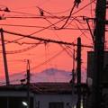 写真: 夕焼けと山頂