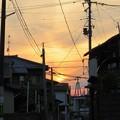 写真: 黄昏CAT