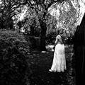 写真: 桜の木の裏で