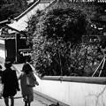 写真: 古都の階段