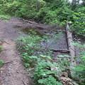 180726-23再挑戦「霞沢岳登山」・小さな池まで下りました