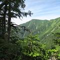写真: 180726-30再挑戦「霞沢岳登山」・霞沢岳(3/3)