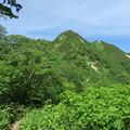180726-39再挑戦「霞沢岳登山」・K1ピーク