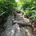 写真: 180726-46再挑戦「霞沢岳登山」・K1ピークへの登り