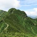 写真: 180726-50再挑戦「霞沢岳登山」・K1ピークから次に行く霞沢岳への道(2/2)