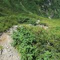 180726-64再挑戦「霞沢岳登山」・いざK2ピークへ出発