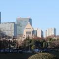 写真: 190107-40はとバス・東京1日・皇居・外桜田門付近からの国会議事堂