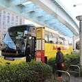 写真: 190107-97はとバス・東京1日・お台場・お台場から東京タワーへ