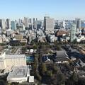 190107-104はとバス・東京1日・東京タワ・大展望台からの景色