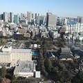 190107-105はとバス・東京1日・東京タワ・大展望台からの景色
