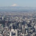 190201-38スカイツリーから日本橋まで・スカイツリー・展望回廊からの富士山