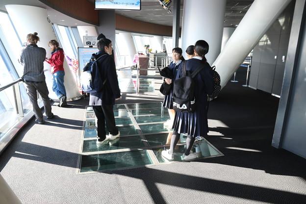 190201-72スカイツリーから日本橋まで・スカイツリー・展望デッキ・ガラス床