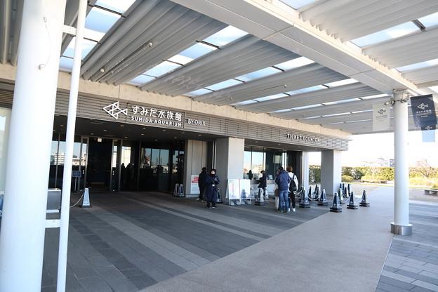 190201-75スカイツリーから日本橋まで・すみだ水族館