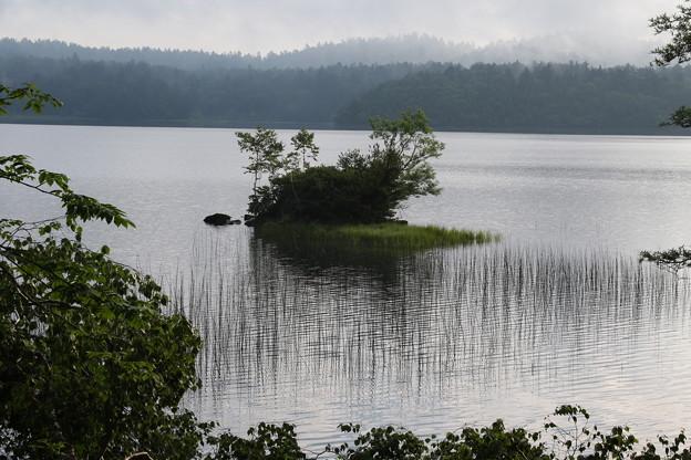 190725-26大江湿原と尾瀬沼・尾瀬沼時計回り一周・尾瀬沼にはこんな島?もあります
