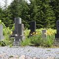 190725-50大江湿原と尾瀬沼・大江湿原・平野家の墓