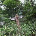 190725-68大江湿原と尾瀬沼・尾瀬沼反時計回り一周・南岸分岐