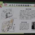 191001-126都電荒川線沿線めぐり・飛鳥山公園・旧渋沢庭園・ようこそ