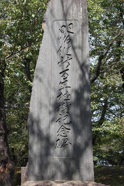 191001-134都電荒川線沿線めぐり・飛鳥山公園・私には読めない碑