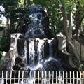 191117-180明治神宮、原宿そして神宮外苑・神宮外苑・滝