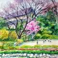 03花木園早春