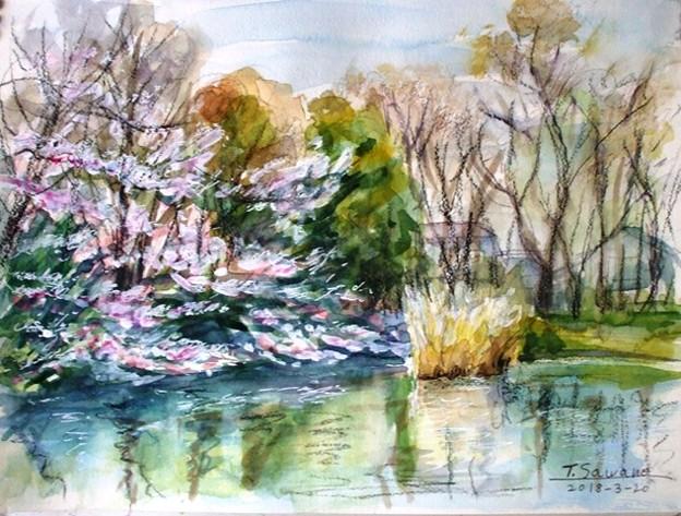 04春の菊名池