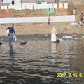 Photos: 031洗濯もガンジス川で1