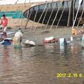Photos: 032川で洗濯