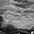 写真: 成田の秋空1