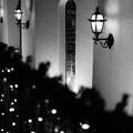 写真: 灯る