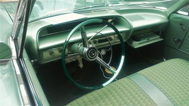 Photos: impala