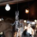 Photos: メリーさん作ウサギ