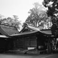 Photos: 常陸国総社宮