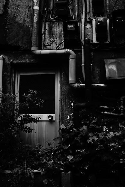 Photos: 裏ドア