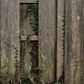 木塀アート