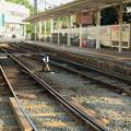 Photos: 道後温泉駅