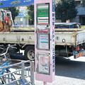 Photos: ピンクのバス停
