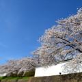 写真: 会津武家屋敷2