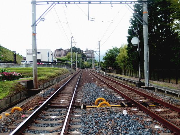 Photos: 電車道1