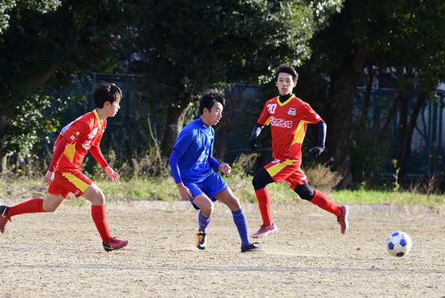 TRM成徳s_603