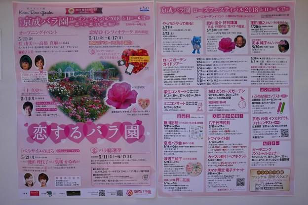 2018京成バラ園P1060485
