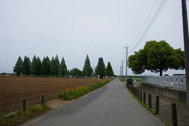 あけぼの山農業公園P1060973
