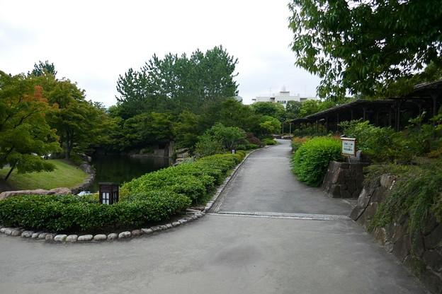 徳川園P1140575